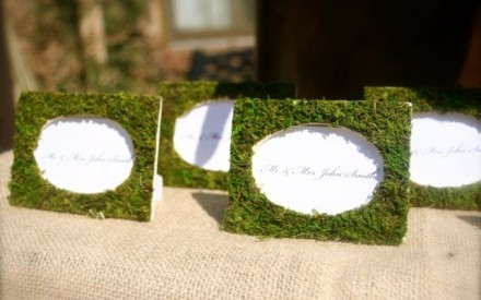 Moss covered place name frames by Spotted Leopard