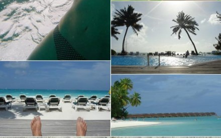 Tom and Niki – honeymoon in The Maldives
