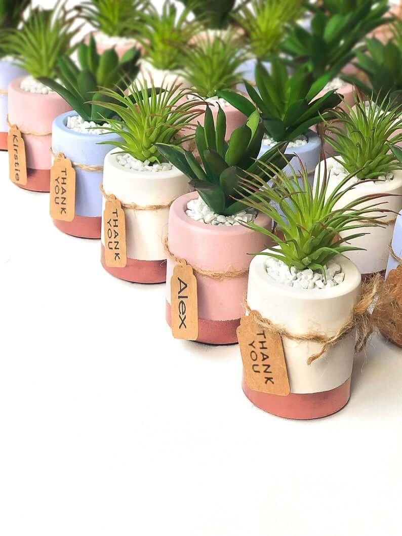 Unusual & Personalised Wedding Favour Ideas l Mini Succulent Plant Wedding Favours