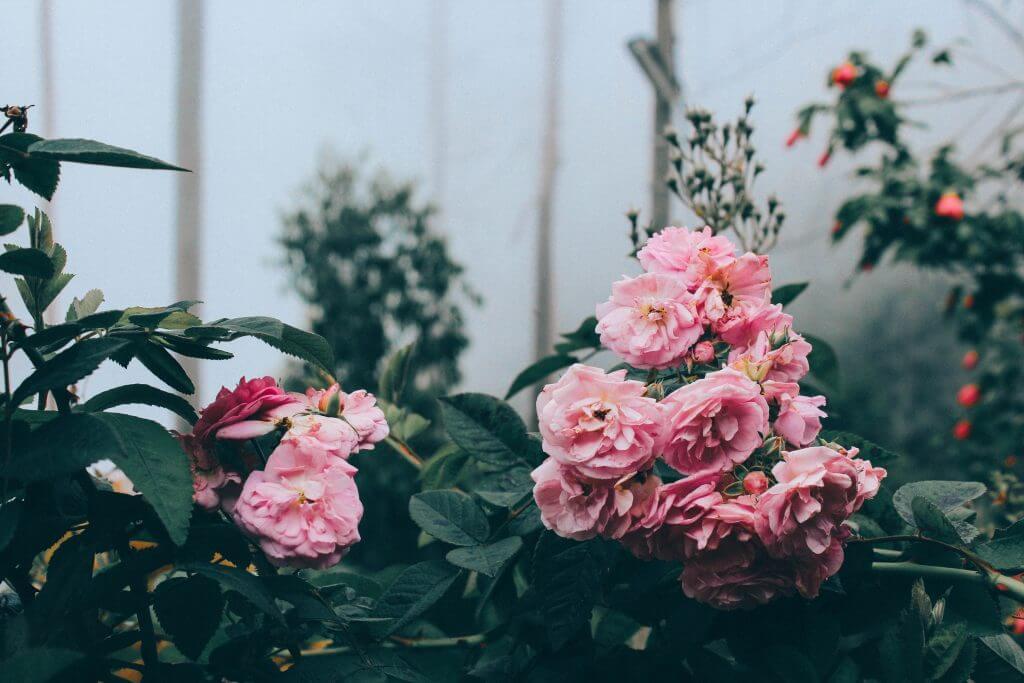 Wedding Day Flower And Bouquet Inspiration   Realwedding.co.uk