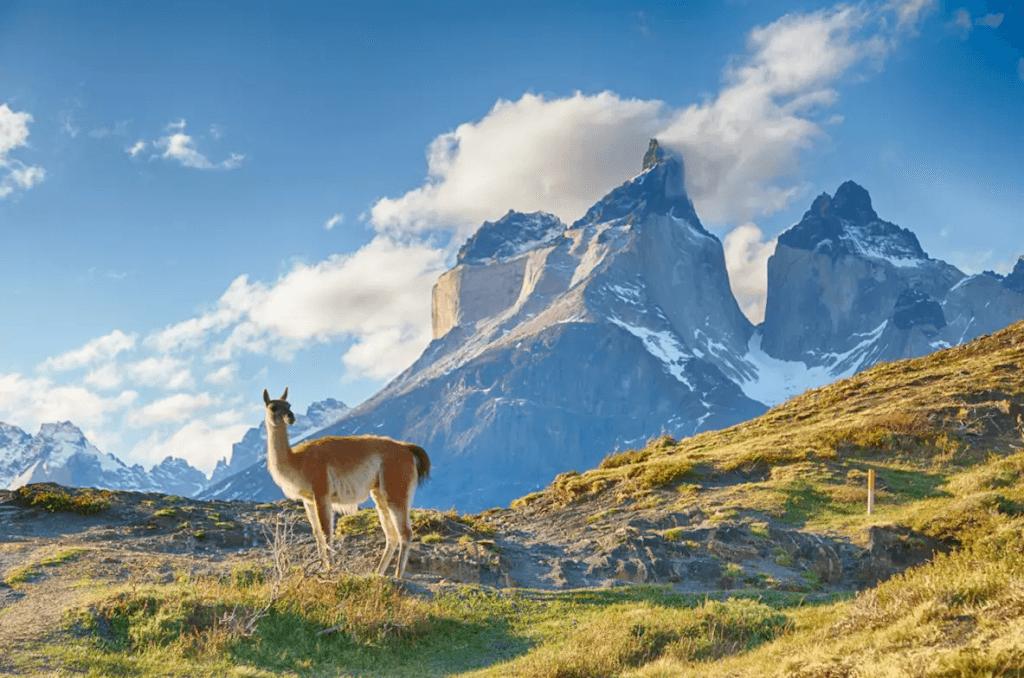 Explore Chilean Patagonia