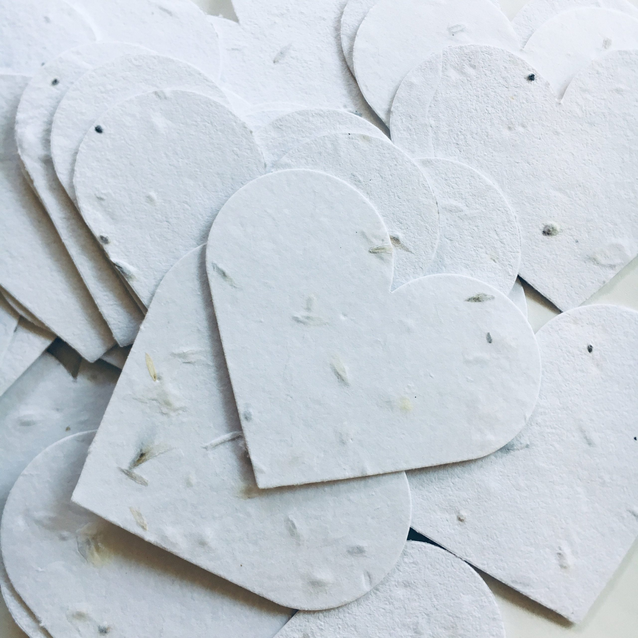 Plantable Seed Paper Hearts